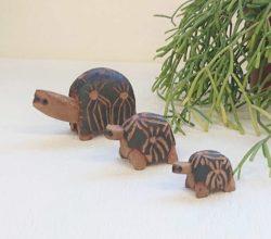 マダガスカル木彫りオブジェ かめファミリー